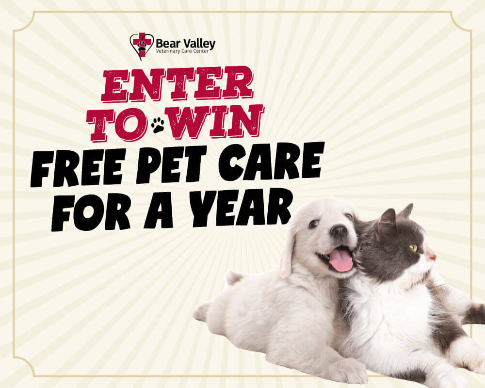 Win free care for your best furry friend for an entire year at Bear Valley Veterinary Care Center!
