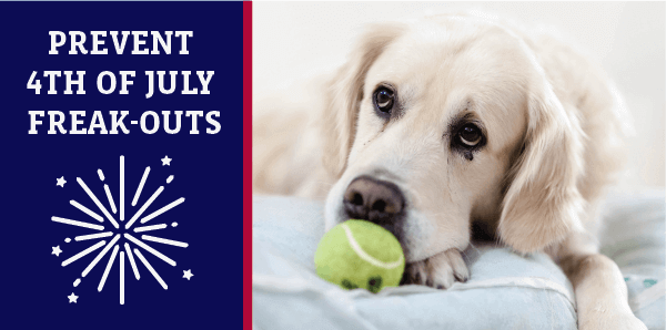 Prevent 4th of July Freak-Outs