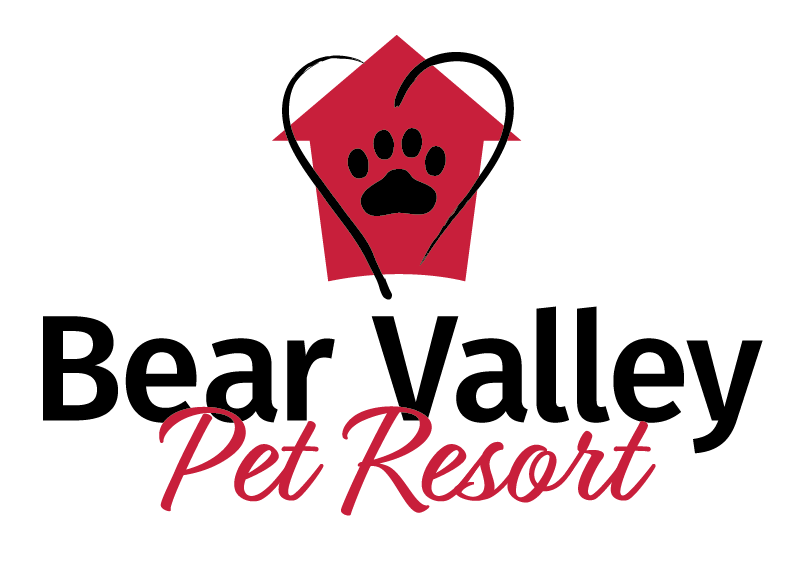 Pet Resort
